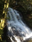 hidden treasure in the heart of Nanaimo - the Colliery Damn upper falls