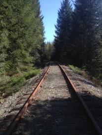 along the tracks heading south towards South Wellington